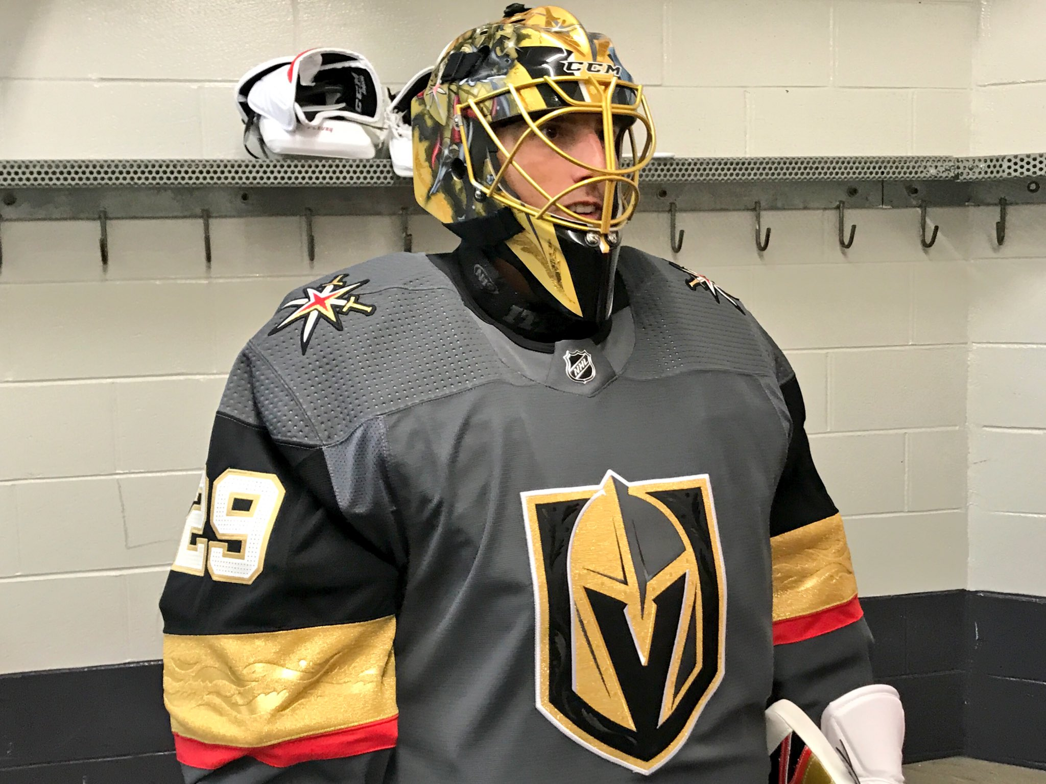 Hbd Masks 2017 18 Western Conference Preview Hockey By Design